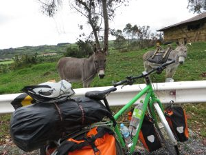 (Draht-)Esel trifft Esel