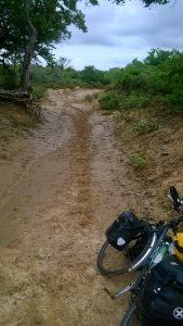 nach 1km durch Sand schieben und einem Weg, der zum See wird, gebe ich den Quer-durch-die-Wueste-Weg auf und kehre zurueck zum Asphalt