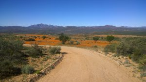 Im Namaqua Nationalpark