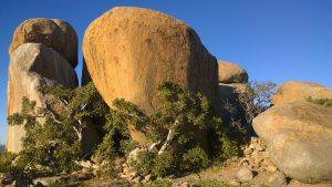 Diese Felsgruppe diente im Burenkrieg gegen die Engländer etwa 100 Buren als Festung