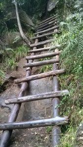 auch in den Drakensbergen